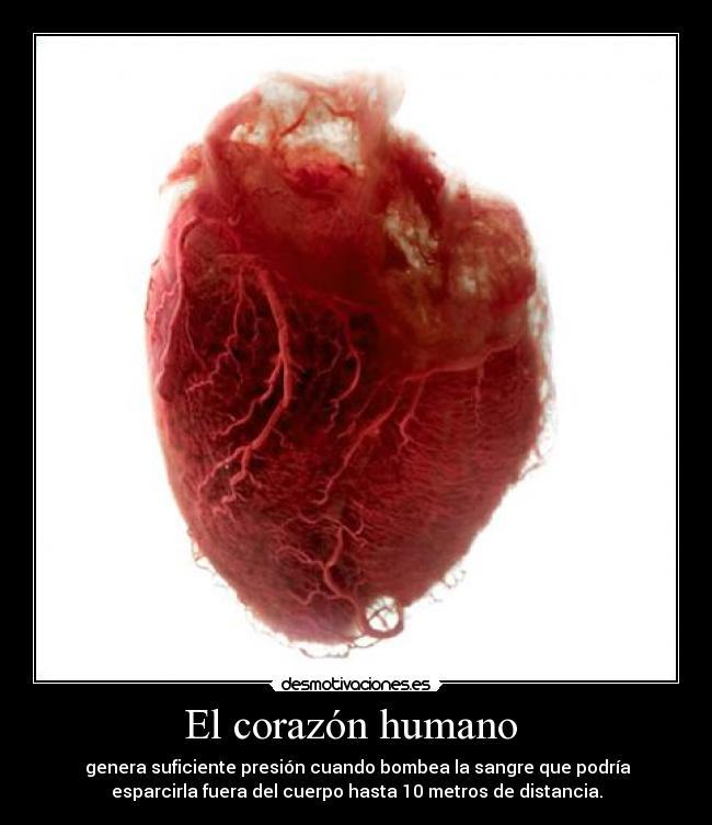 El corazón humano | Desmotivaciones