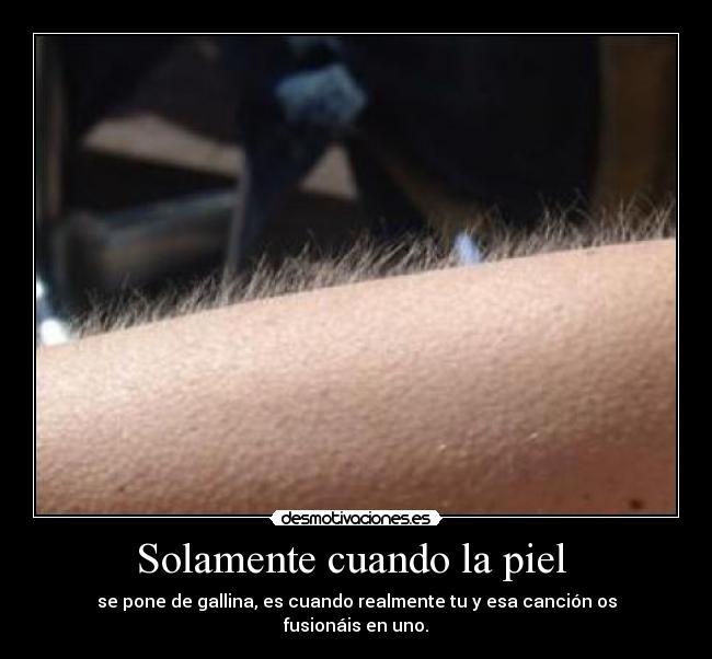 http://img.desmotivaciones.es/201104/pieldegallina_1.jpg