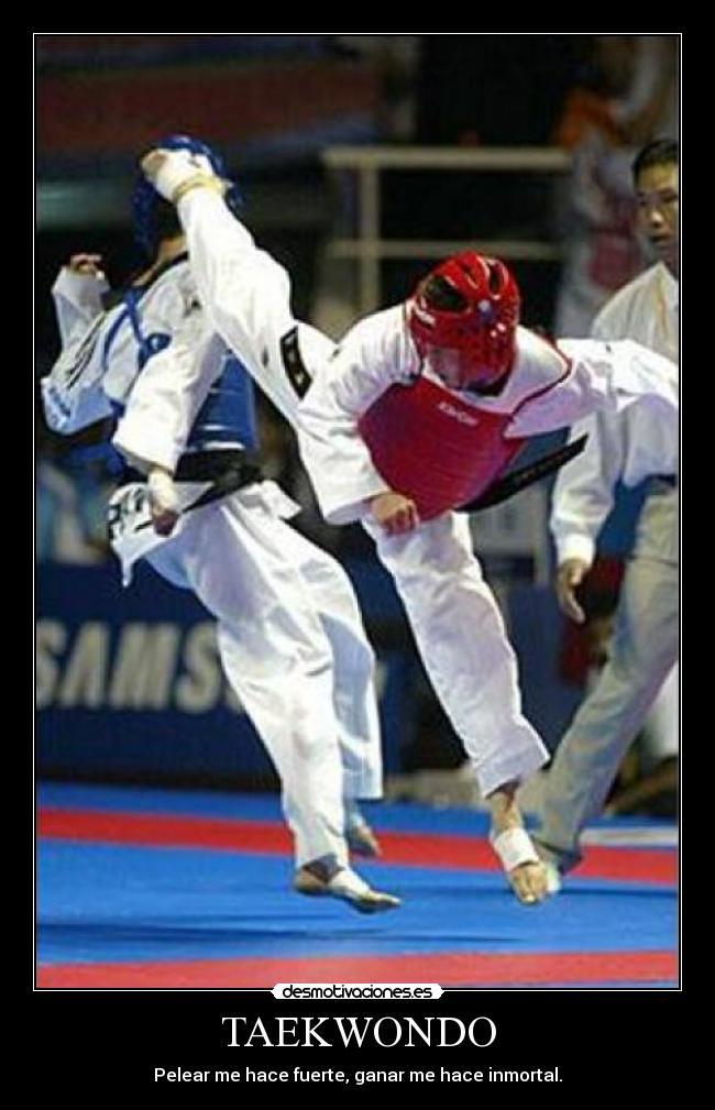 Imágenes Y Carteles De Taekwondo Desmotivaciones