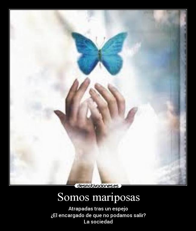 Somos mariposas  Desmotivaciones