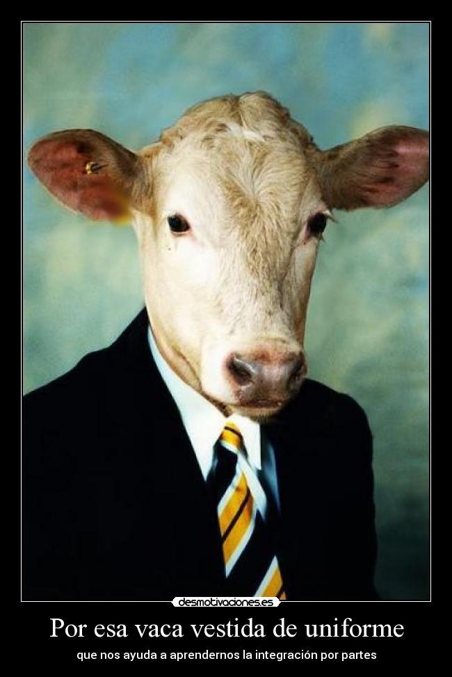 Por esa vaca vestida de uniforme | Desmotivaciones