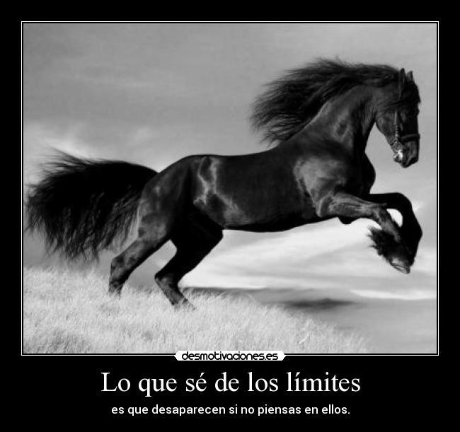 carteles limites desaparecen caballo los limites desmotivaciones 329c8e48c581