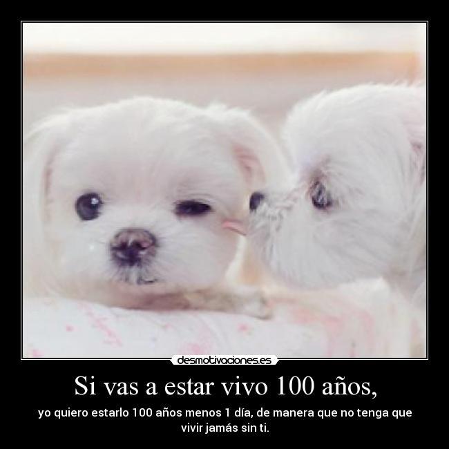 Imagenes Y Carteles De Cachorros Pag 10 Desmotivaciones
