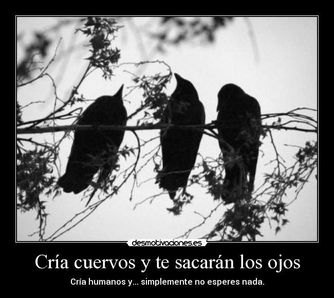 Cría cuervos y te sacarán los ojos   Desmotivaciones