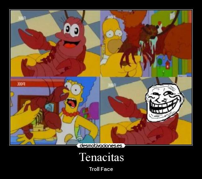 http://img.desmotivaciones.es/201107/Tenacitastrollface.jpg