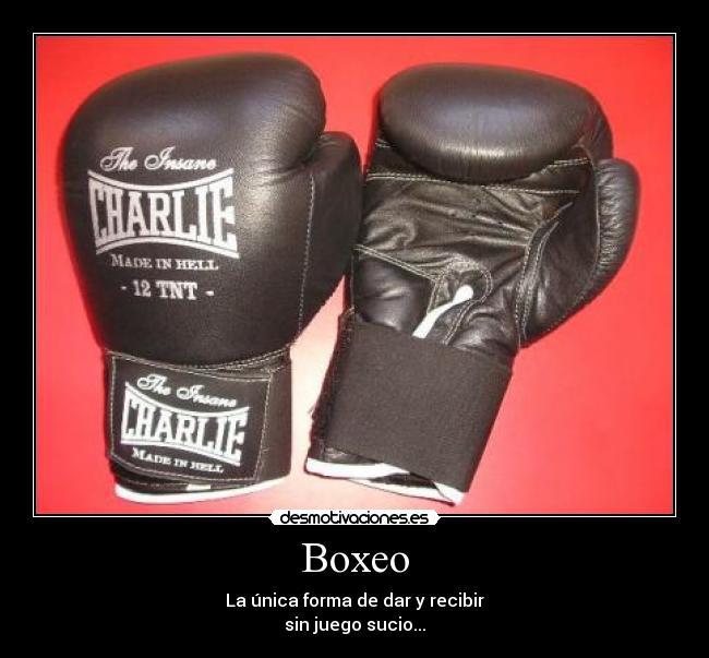 Imágenes Y Carteles De Boxeo Pag 14 Desmotivaciones