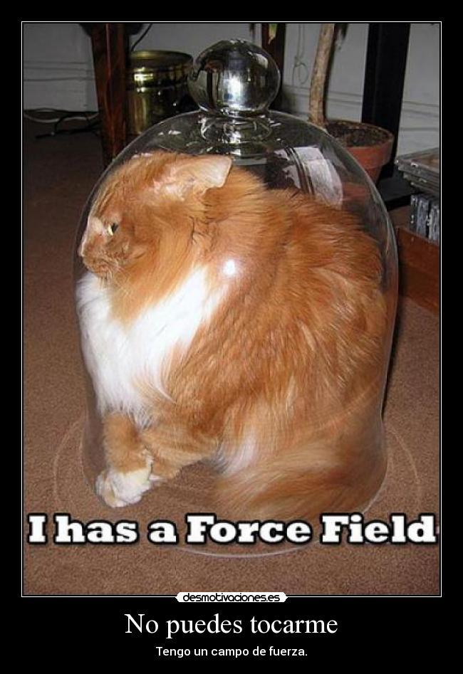 carteles gato cristal campo fuerza desmotivaciones 658d4a8e02ac