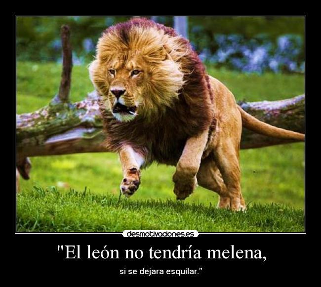 que es la melena del leon