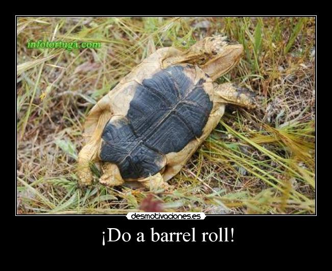 ¡Do a barrel roll! -