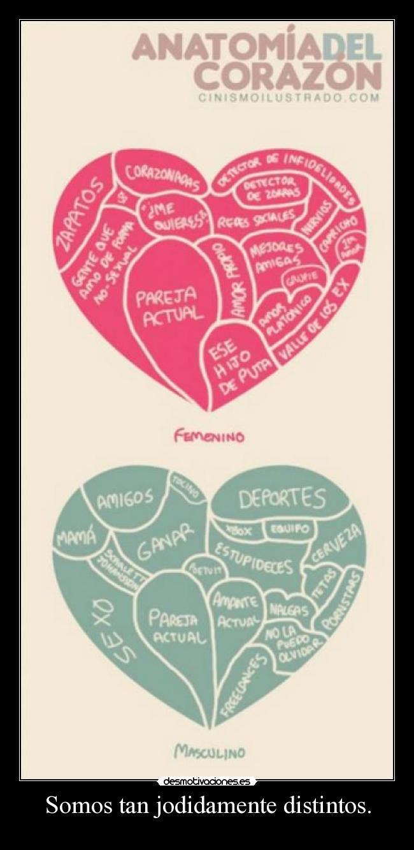 Imágenes y Carteles de ANATOMIA Pag. 14 | Desmotivaciones
