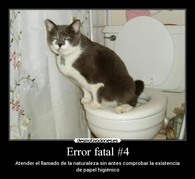 carteles slipkdemon papel higienico bano toilet error 404 not found intruders desmotivaciones