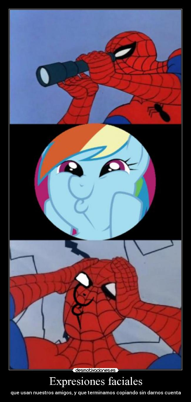 carteles dios mio este cartel realmente malo little pony rainbow dash spiderman desmotivaciones