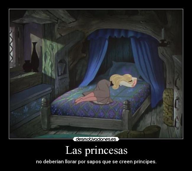 carteles princesas sapos principes desmotivaciones 2a0fa9701e93