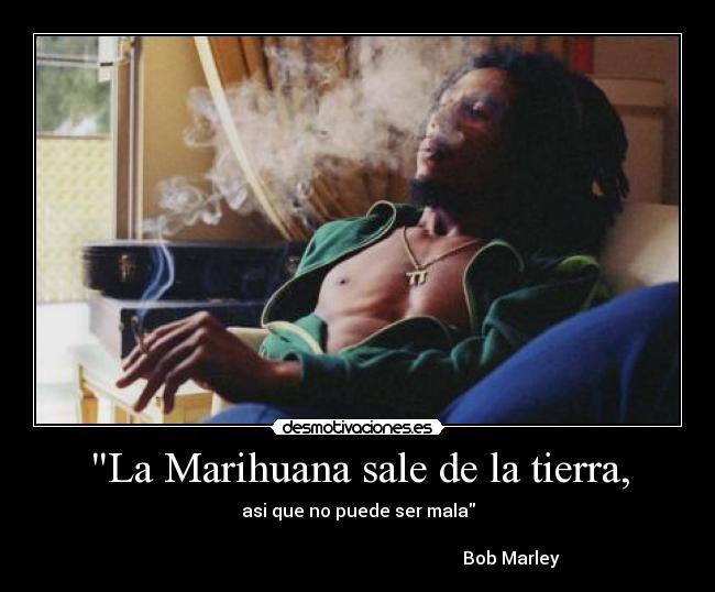 La Marihuana Sale De La Tierra Desmotivaciones