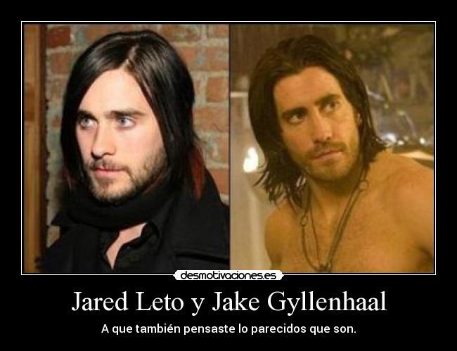 http://img.desmotivaciones.es/201203/parecidosrazonablesjaredletojakegyllenhaal_1.jpg
