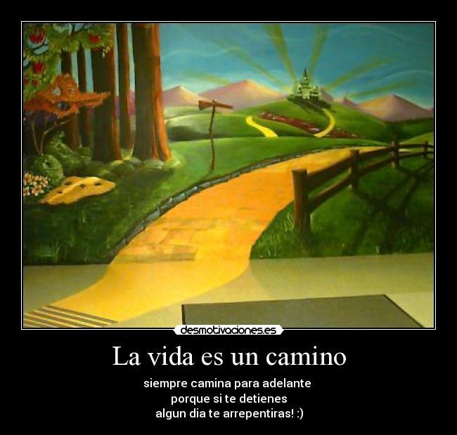 La Vida Es Un Camino Desmotivaciones