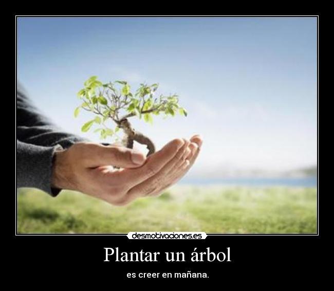 carteles plantar arbol creer manana desmotivaciones