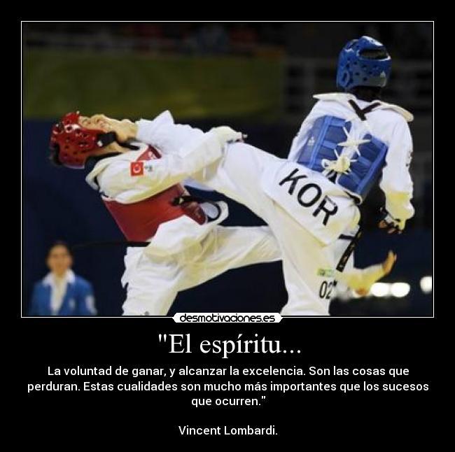 Imágenes Y Carteles De Taekwondo Pag 35 Desmotivaciones