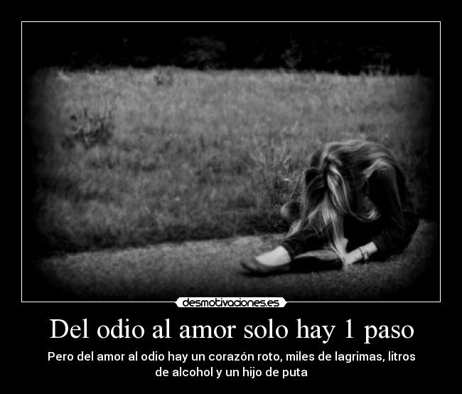 Del Odio Al Amor Solo Hay 1 Paso Desmotivaciones