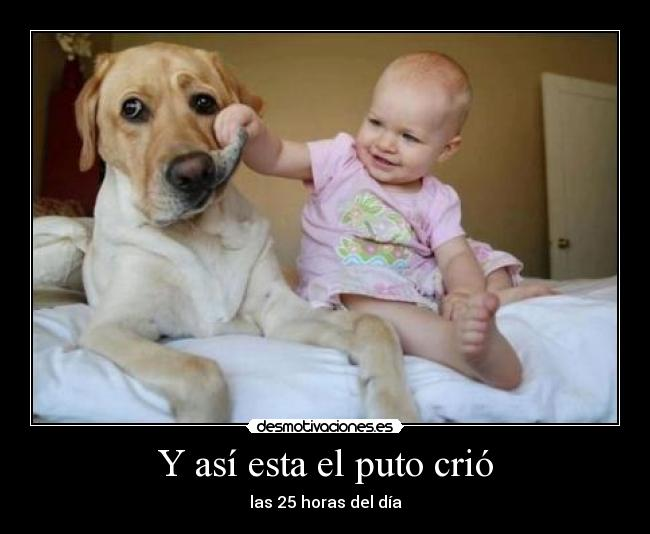 Algo_mas_que_imagenes.jpg