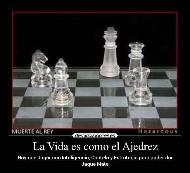 Imágenes Y Carteles De Ajedrez Pag 98 Desmotivaciones