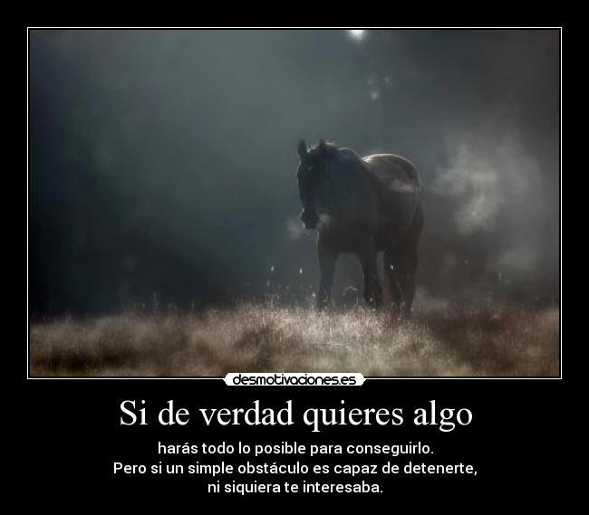 carteles caballo capaz hacer todo para sobrevivir tu solo vives  desmotivaciones 7b380d707ad2