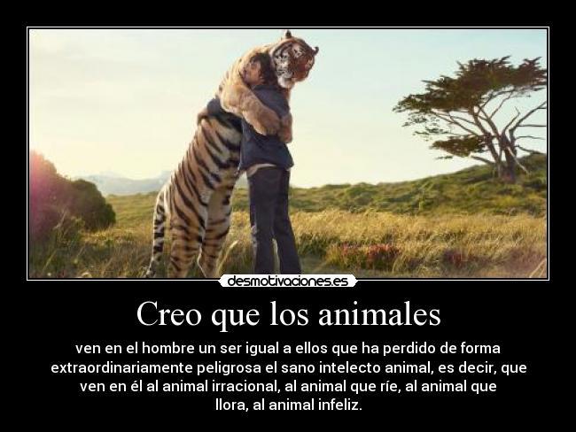 Citas Famosas Sobre Animales Blog Veterinaria Del Bosque