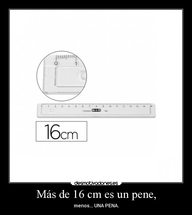 Pene de 16 cm.
